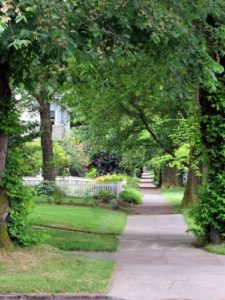Green streets of Portland