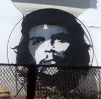 Che a revolutionary life