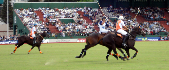 Polo championship Buenos Aires